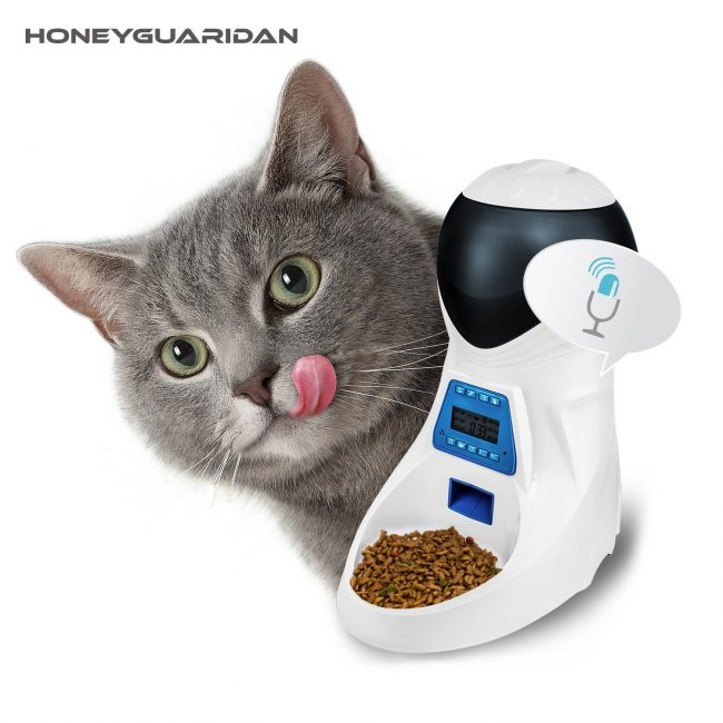 Automatic Cat Feeder Review
