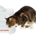Cat Mate Fresh Water Drinking Fountain